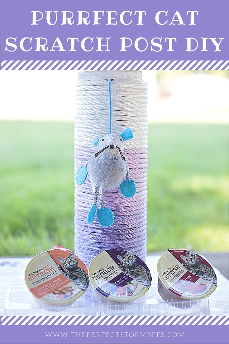 Purrfect Ombre Cat Scratch Post DIY - The Perfect Storm